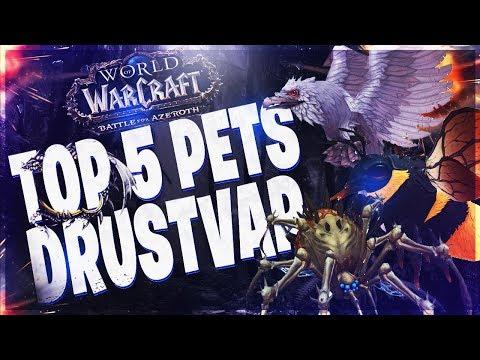 Top 5 Rare Hunter Pets In Drustvar Battle For Azeroth 8 0 Youtube
