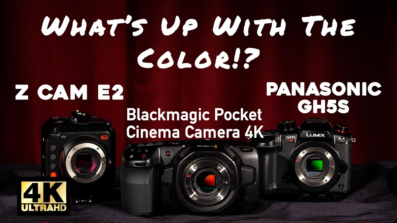 What S Up With The Color Bmpcc 4k Vs Z Cam E2 Vs Gh5s Youtube