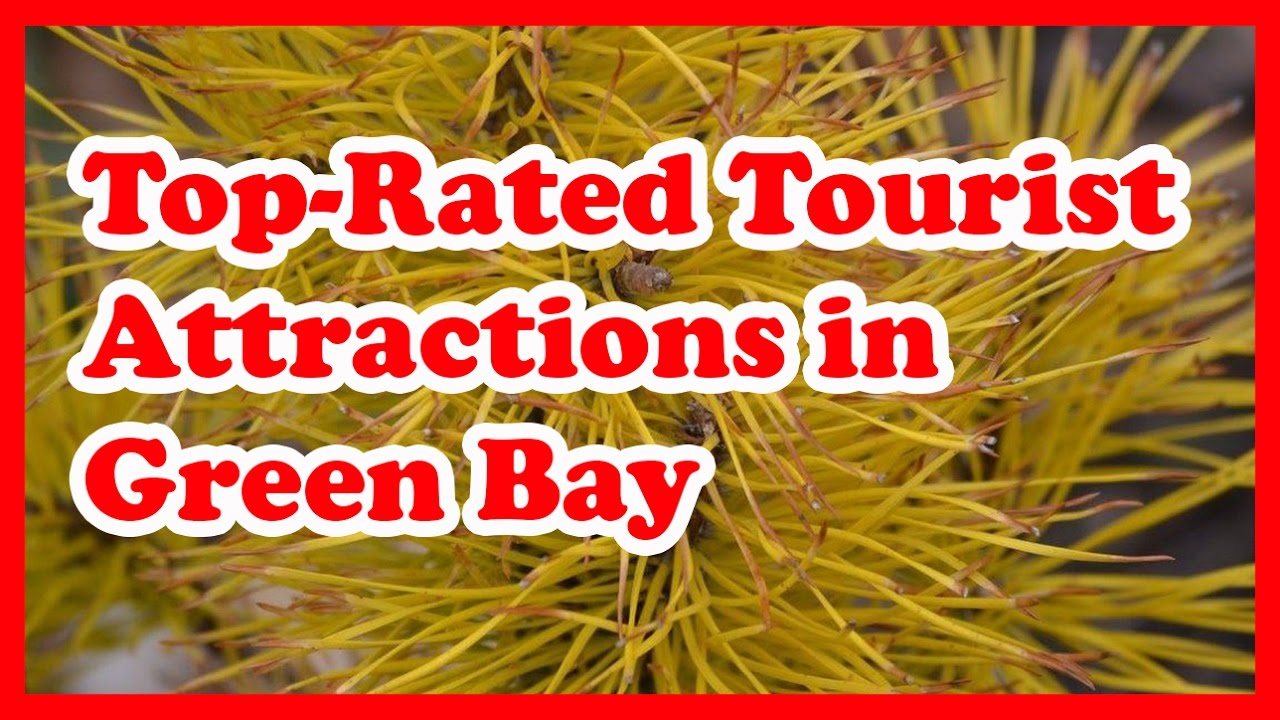 5 Top-Rated Tourist Attractions in Green Bay, Wisconsin | US Travel Guide