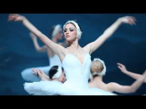 St Petersburg Ballet presents Swan Lake - Edinburgh Playhouse - ATG Tickets