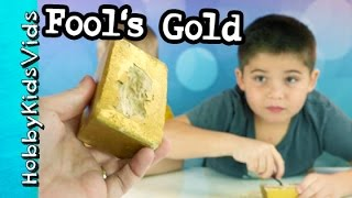 Fool's Gold Treasure Dig! HobbyPig + HobbyFrog Find Pyrite Rocks by HobbyKidsVids