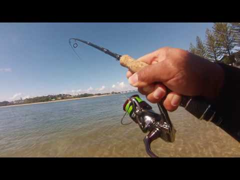 Flathead Fishing Ballina Part1
