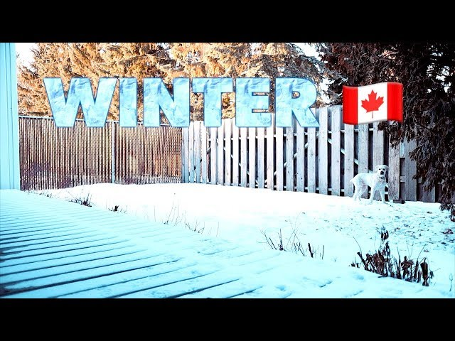 Winter 🇨🇦: #TenSecondTuesday