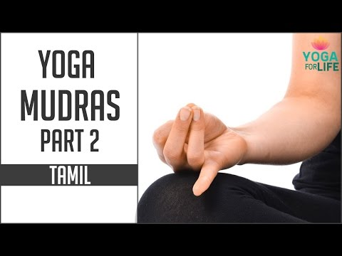 Yoga Mudras Yoga In Tamil Yoga For Life Hand Gestures Part 2 Youtube