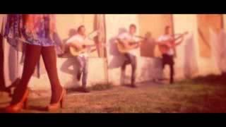 Elcin Ceferov Yadina Sal Official clip)