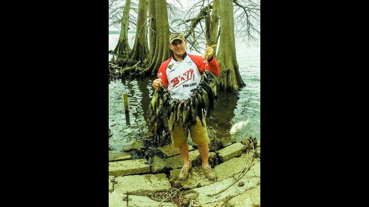 Crappie Fishing: Crappie Fishing Reelfoot Lake