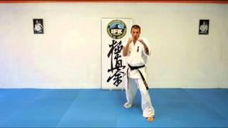 Karate Kyokushin Video Lesson 1