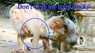 No No Do Not Grab My Baby Rocky Kidnapper Mekala ! Rozy So Scared While Mekala Drag Rocky