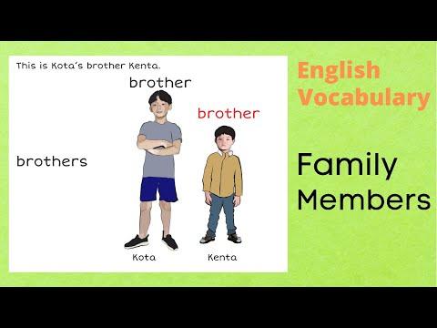 English Vocabulary Builder Family