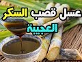 لن تصدق فوائد عسل قصب السكر العجيبة ,,فوائد تجبرك على تناولة باستمرار !!