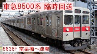 【東急8500系 臨時回送】8636F、南栗橋へ疎開
