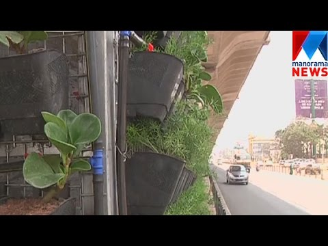 Vertical forest culture begins at Banglore    Manorama News