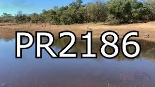 PR2186