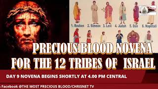 PRECIOUS BLOOD: July Novena For The 12 Tribes Of Israel- Day 9