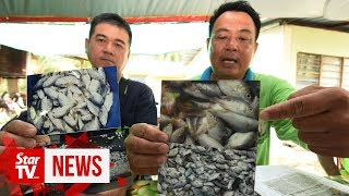 Landfill and fish farms too close for comfort
