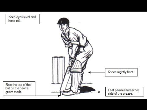 [Full Download] Cricket School Video Downlod