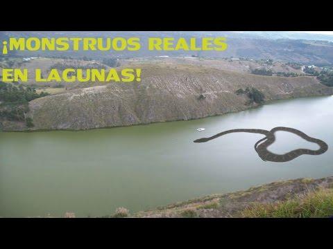 ¡Espeluznante! 5  Monstruos que habitan en las Lagunas