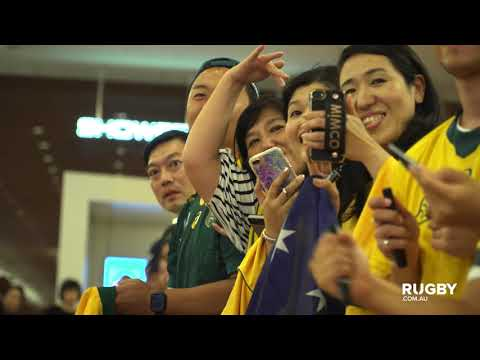 Wallabies arrive in Japan