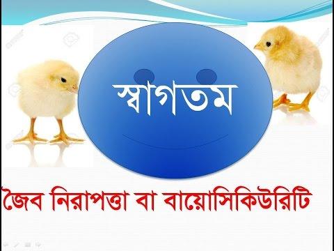 মুরগীর ফার্মের জৈব নিরাপত্তা বা বায়োসিকিউরিটি পর্ব-২ ( Bio security in poultry farm -part 2)