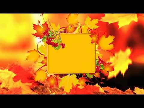Футаж осенние листья