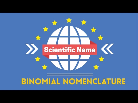Scientific Name Binomial Nomenclature