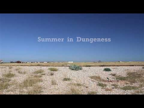 Summer in Dungeness