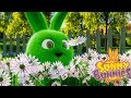 Cartoons for Children | SUNNY BUNNIES FLOWER PICKING | Funny Cartoons For Children