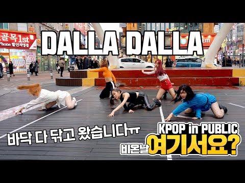 [여기서요?] 있지 ITZY - 달라달라 DALLA DALLA | 커버댄스 DANCE COVER | KPOP IN PUBLIC @동성로