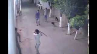 NEW GANG FIGHT AT CAMPUS WITH  KNIFES