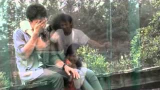 Download lagu Aglonema Rindu Dipelukmu 3gp MP3