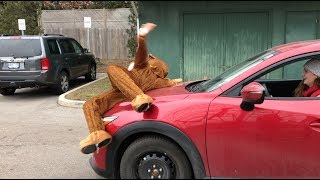 WHO KILLED RUDOLPH?!: A Mystery