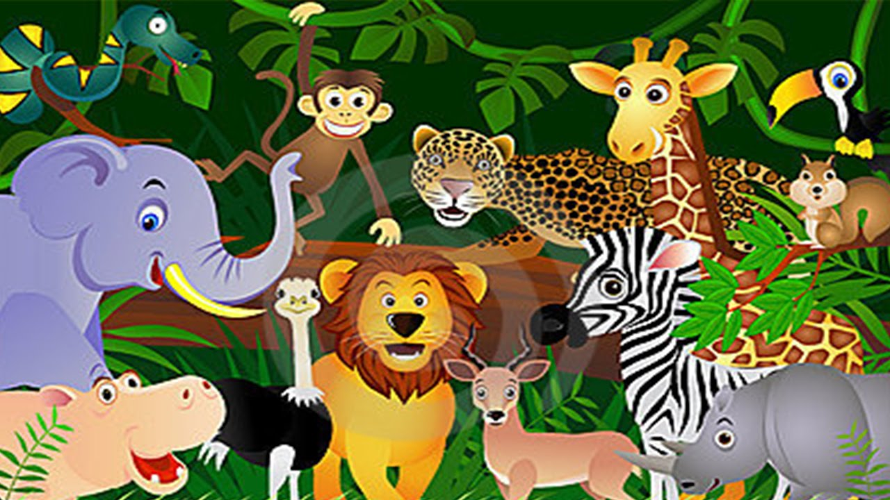 learn about animals for toddlers animal song animal song zoo animals youtube - Animal Pictures For Toddlers