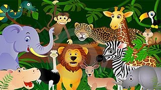 Learn About Animals - For Toddlers - Animal Song - Animal Song - Zoo Animals