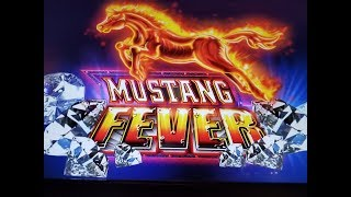 *BIG WIN*MUSTANG FEVER*BONUS RE-TRIGGER*HARDROCK TAMPA*