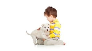 How To Avoid Separation Anxiety | Puppy Care