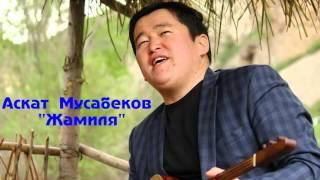Аскат Мусабеков Жамиля