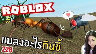 What do jellyfish eat fresh shit ft Roblox 226. Taoie Nutsuchan DevilMeiji |.
