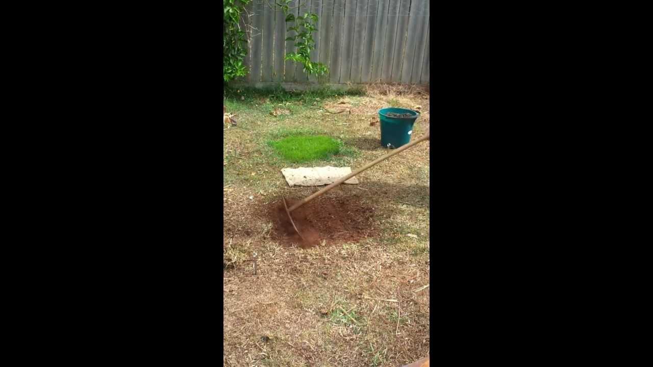 mat mats starter youtube watch seed lawn