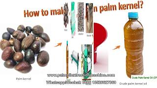 Small scale palm kernel oil making machine, palm kernel oil extraction machine with 0.5-2tph