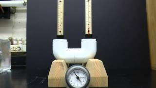 Osmotic Demonstration With Clock