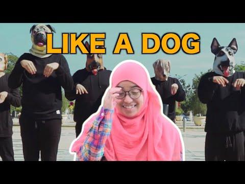 Like A Dog?