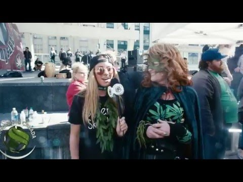 Marijuana Stocks At 420 Toronto
