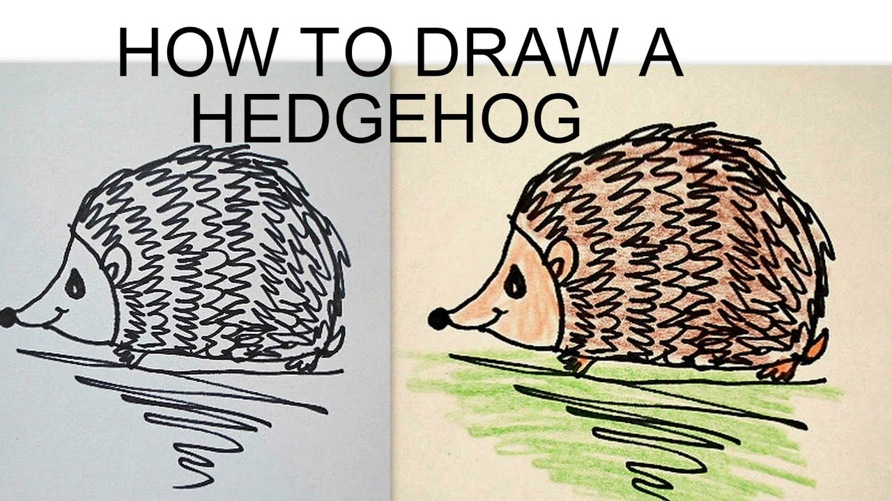 DRAW A HEDGEHOG, easy drawing lessons for kids - YouTube
