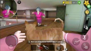 Scary Teacher 3D Verṡion 5.3.4 | Tani Save The Cat