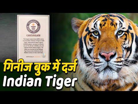 Guinness Record में दर्ज हुआ India में 2018 में किया गया Tiger Census