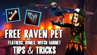 How to get UNBŔOKEN BONES & FEATHERS QUICKLY, a FREE RAVEN PET & Witch Garnet Location - Star Stable