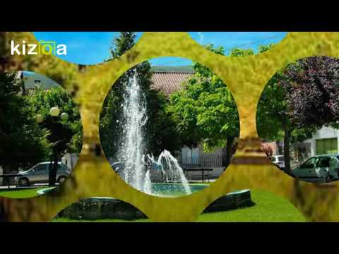 Montagem Vídeo Kizoa: VERDELHOS