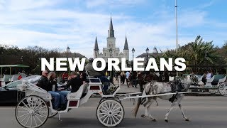 EATING MY FIRST BEIGNET IN NEW ORLEANS! | DRUMMER ON TOUR VLOG