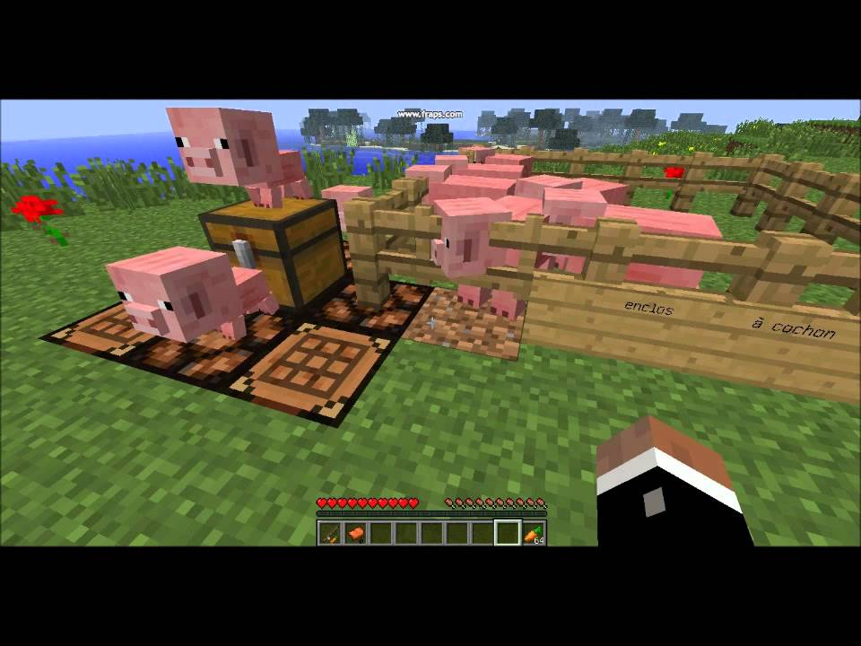 Minecraft tuto 2 comment monter et conduire un cochon youtube - Minecraft cochon ...