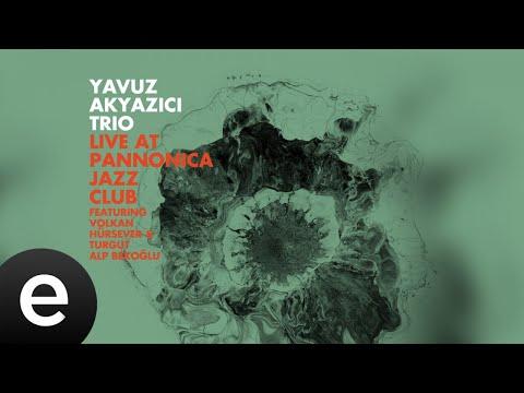 Yavuz Akyazıcı - Hitchiker Girl - Official Audio